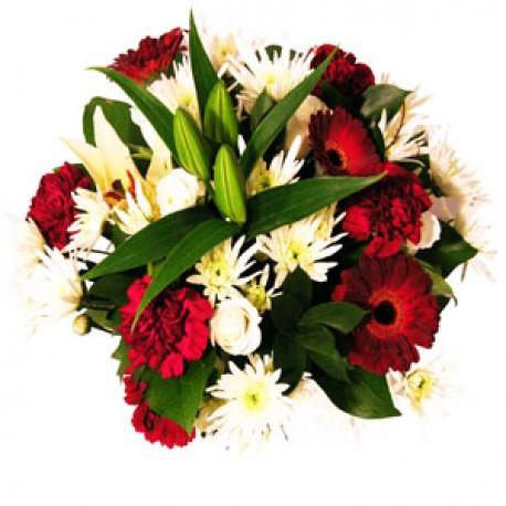 Christmas Aqua Bouquet - Perfect Christmas Gift