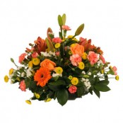 Bright Posy Arrangement in Oasis